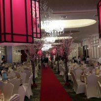 30-12-2016 Fiona Wedding Reception 1