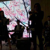 30-12-2016 Fiona Wedding Reception 3