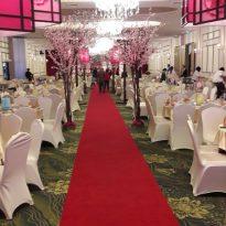 30-12-2016 Fiona Wedding Reception 7