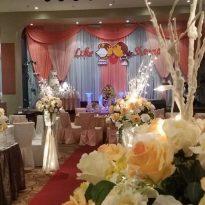 30012016 Luke and Sherine wedding reception. Klang