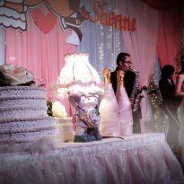 30012016 Luke and Sherine wedding reception. Klang 4
